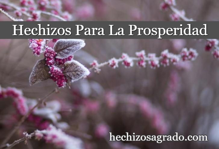 Hechizos Para Atraer La Prosperidad A Tu Vida